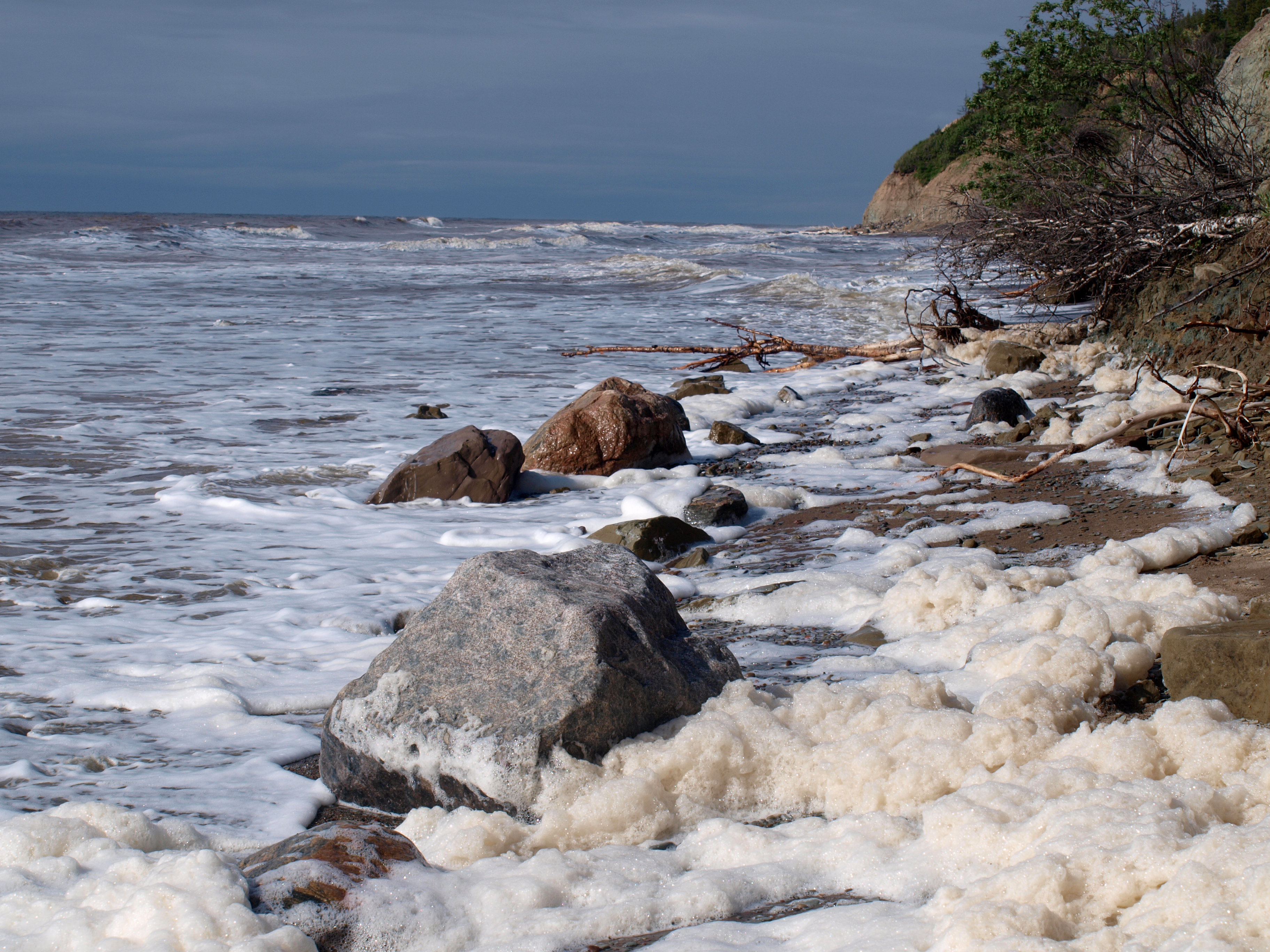 Белое море фото 18 фотография