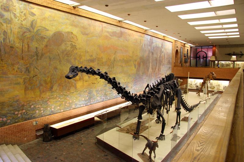 Палеон�ологи�е�кий м�зей им ЮАО�лова
