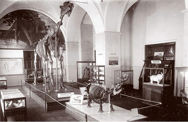Экспозиция старого музея